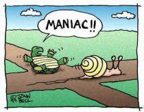 achilles turtle cartoon